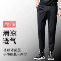 男士冰丝裤(富贵鸟正品)